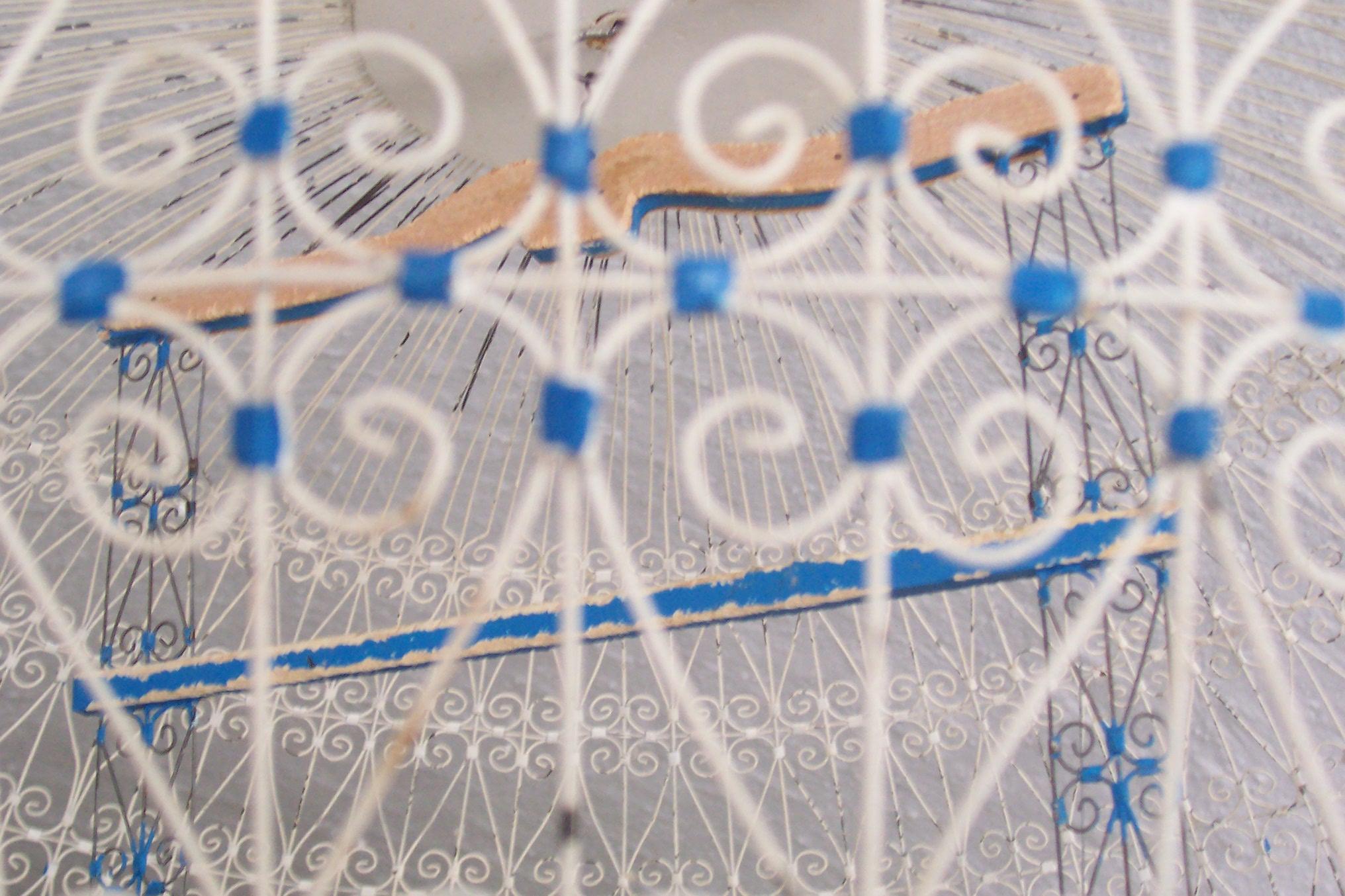 janneke inside a cage bird organic shapes