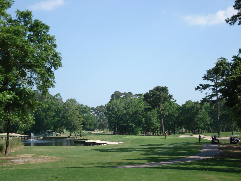 sallie_richardson park golf course pond pine tree trees grass