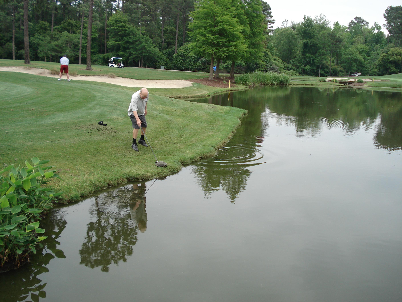 sallie_richardson golf course golfcourse tee grass green bunker pond golfer