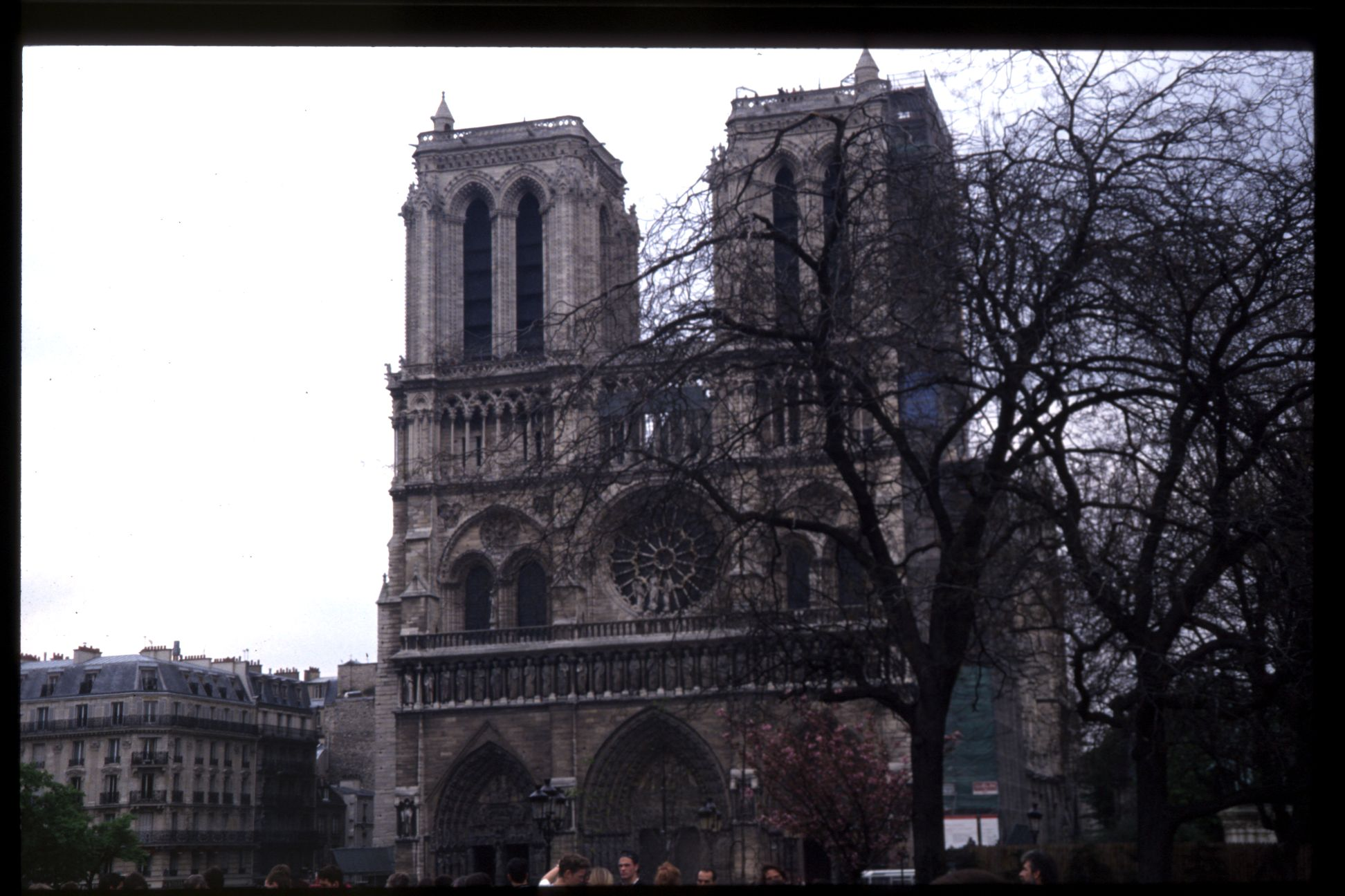 church notre dame notredame paris hunchback of the gothic structure landmark monument french