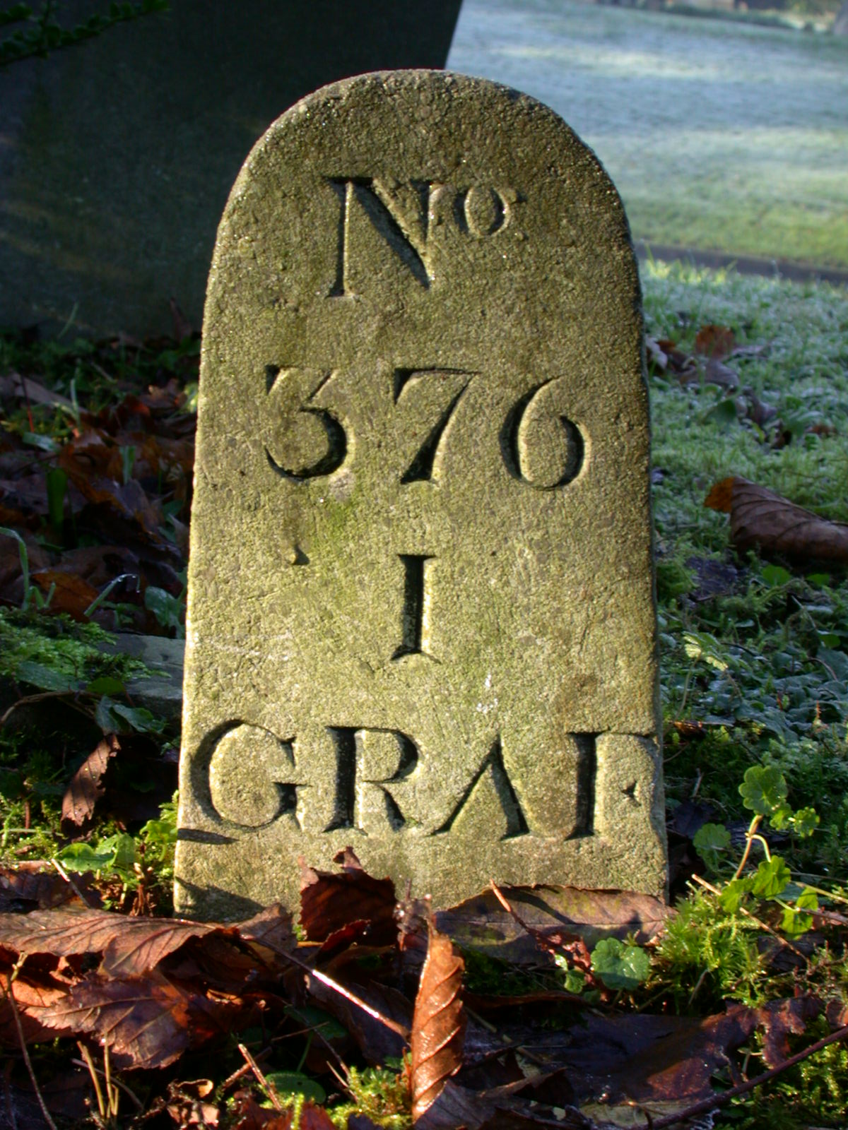 typo typography antique stone concrete texture grave graveyard architecture exteriors numbers no number 376 3 7 6 graf I tombstone tomb