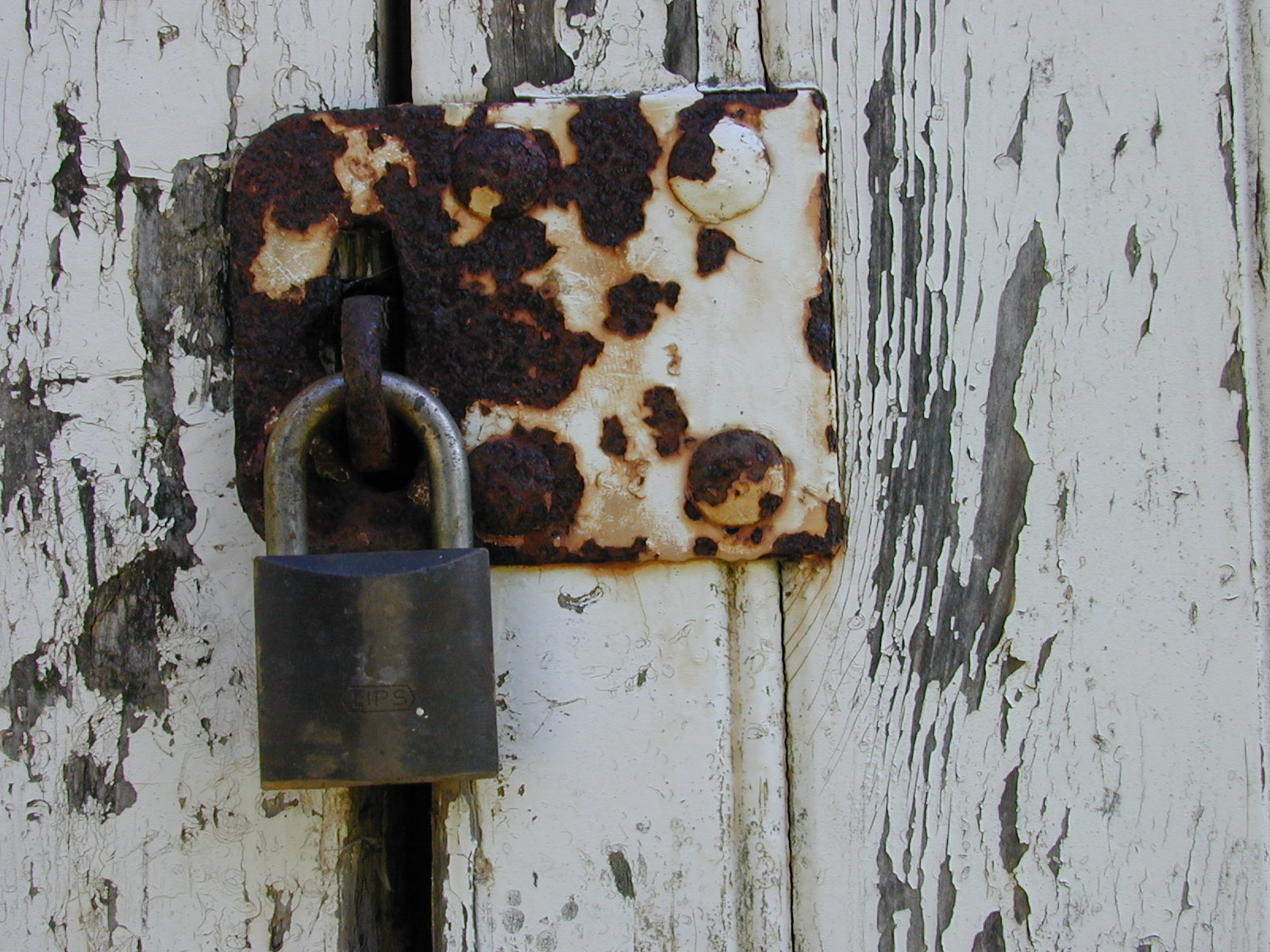 rusty rust lock on wood wooden door padlock pad