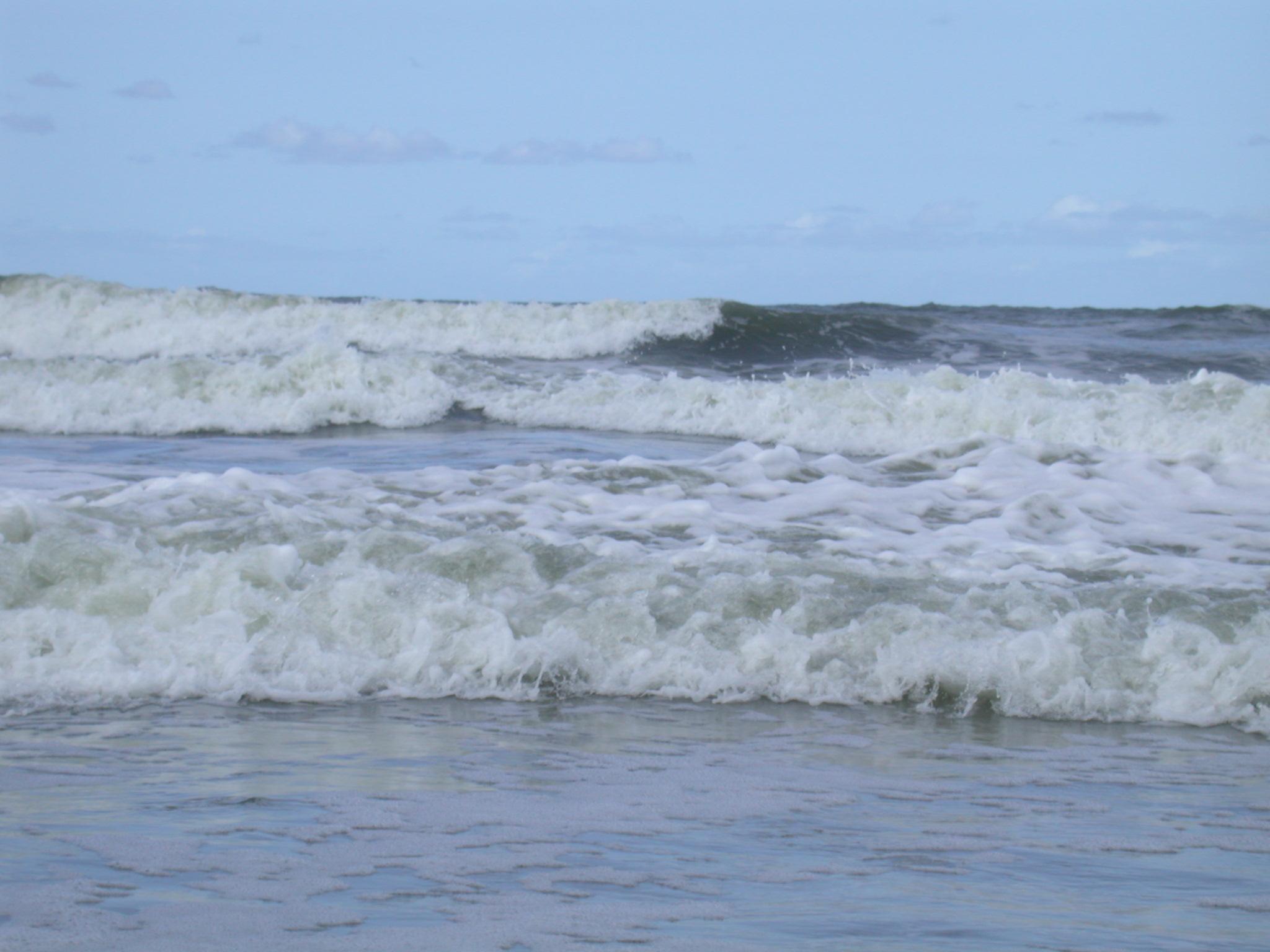 movers long beach ca