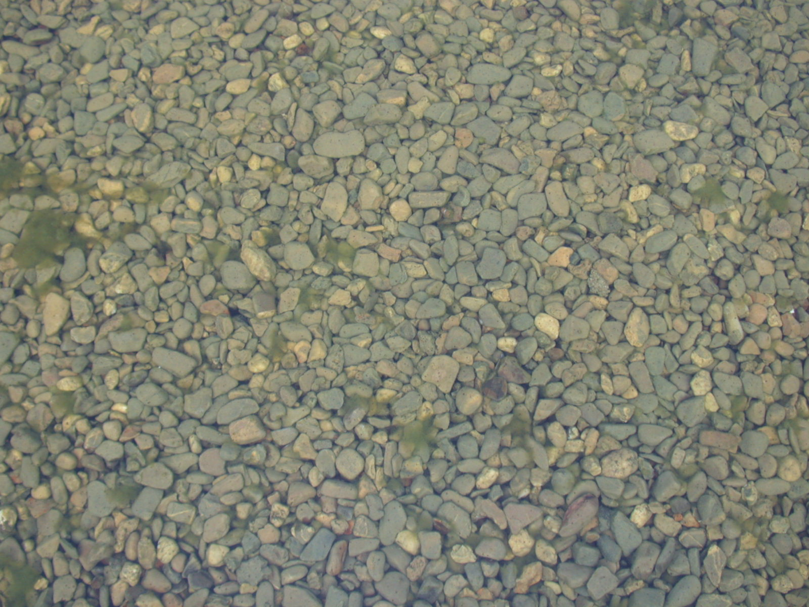 pebbles under water rocks