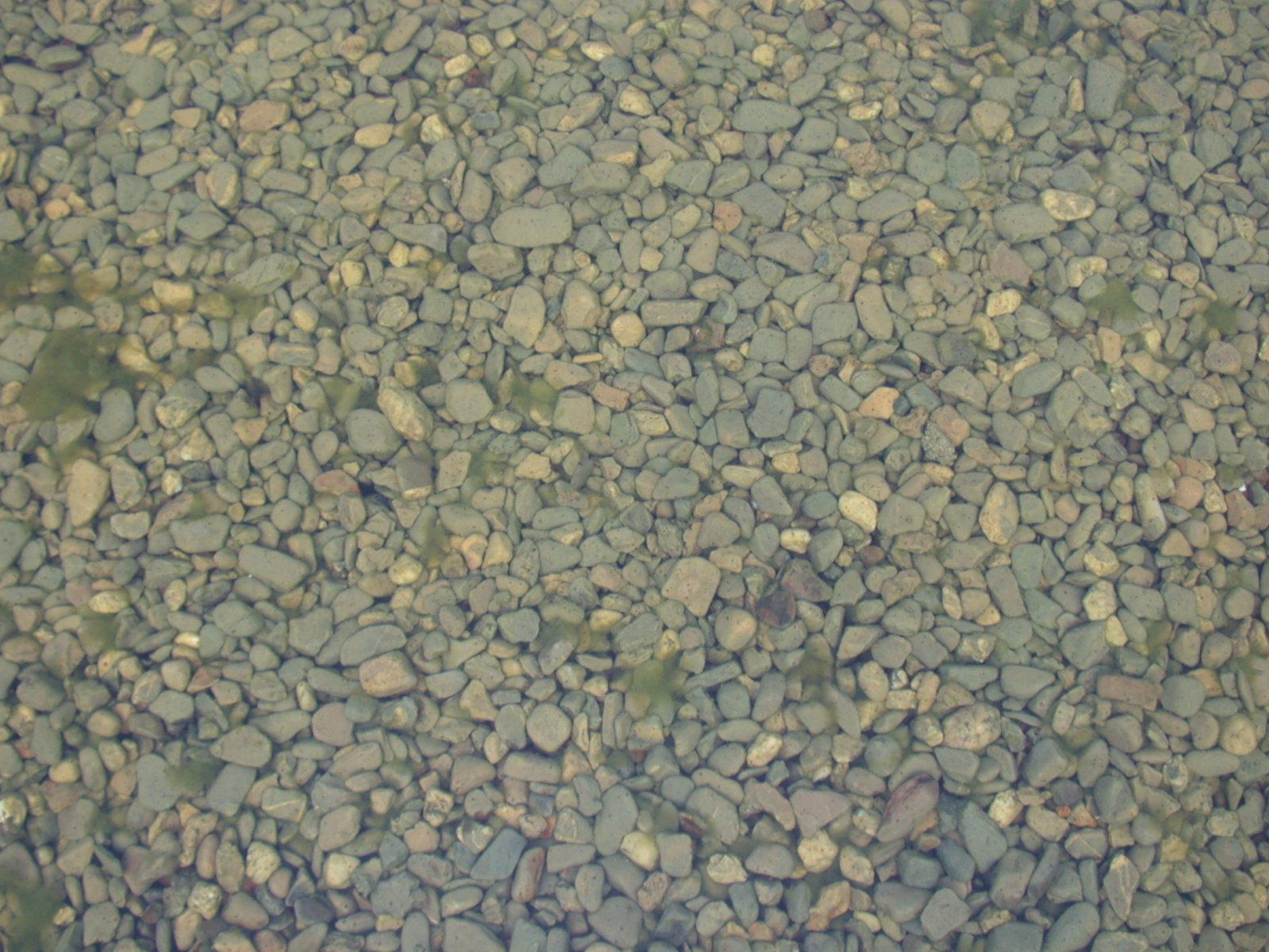 pebbles under water rocks
