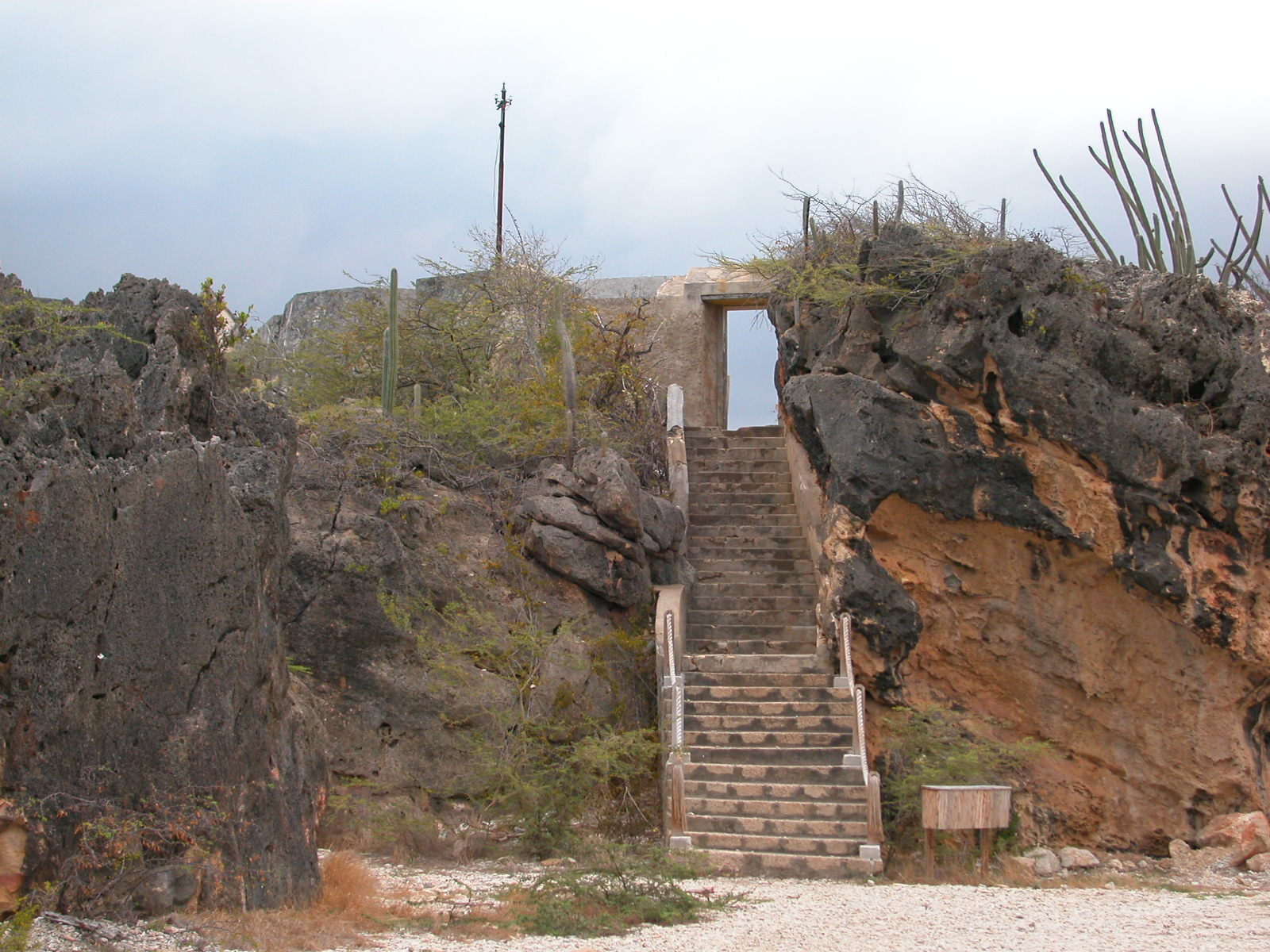 jacco steps stair stairs rocks rocky warm tropical cacti